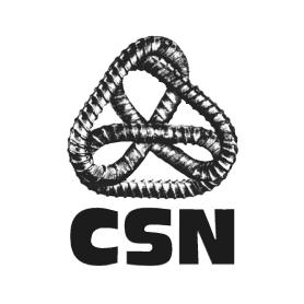Logo de la CSN