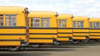 Les conductrices et conducteurs d'autobus scolaires doivent aussi être vaccinés en priorité