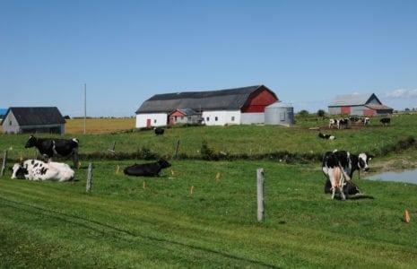 ALENA : les travailleurs et les agriculteurs québécois, victimes de l'administration Trump