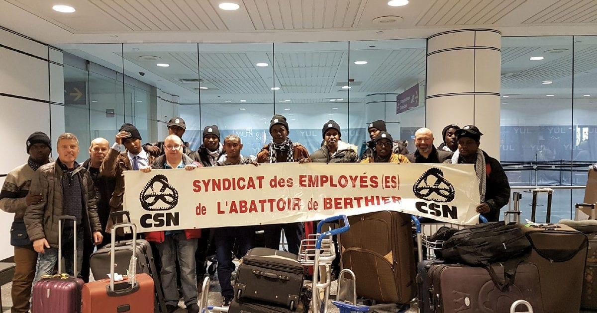12 Djiboutiens entamant leur nouvelle vie au Québec en travaillant à l'abattoir de Berthier