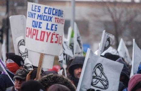 Les travailleuses et travailleurs d'Olymel Princeville sollicitent des appuis