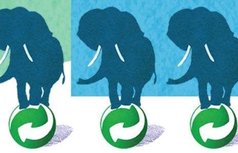 5 éléphants !