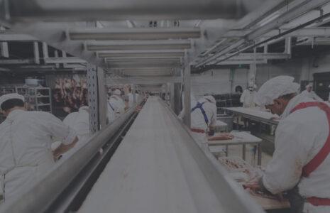 La sécurité des travailleuses et travailleurs de la transformation de la viande sacrifiée pour maintenir la production