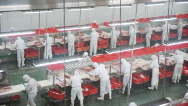 Protocole d'urgence dans les abattoirs : la Fédération du commerce-CSN demande davantage de protection pour les employé-es