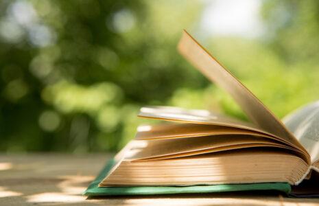 «Le 12 août, j'achète un livre québécois» et j'appuie les libraires de Raffin