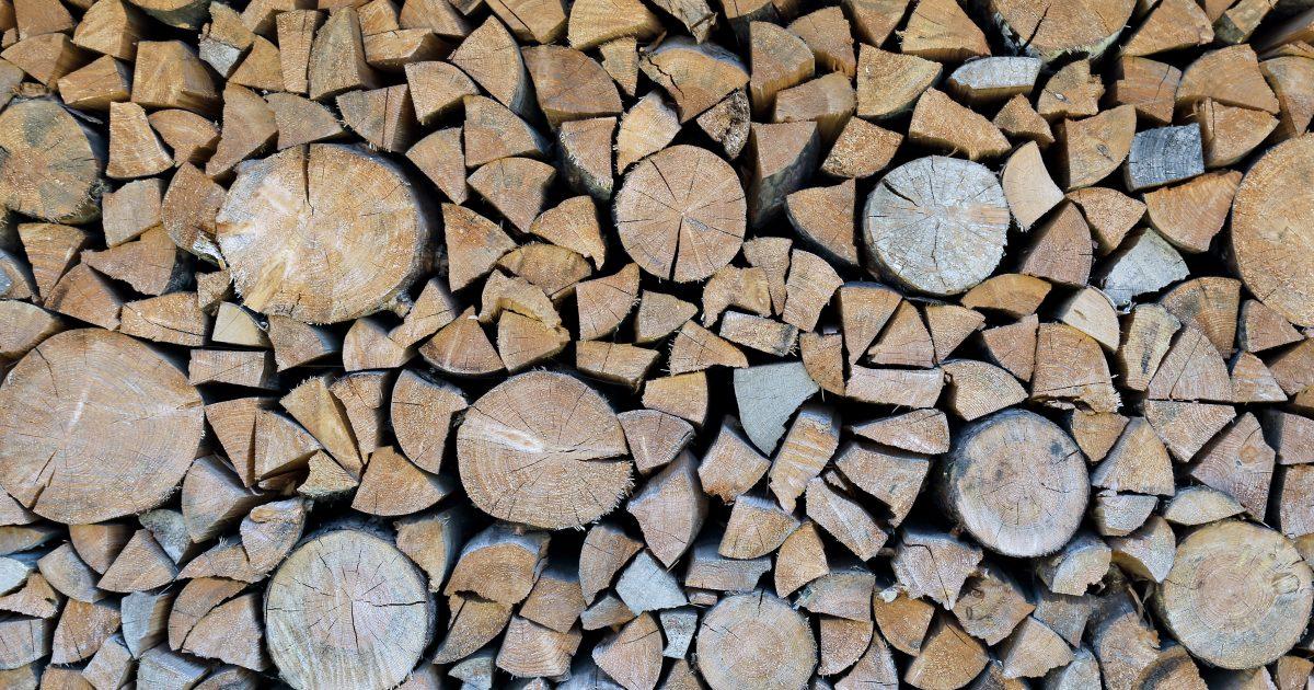 Set of felled logs