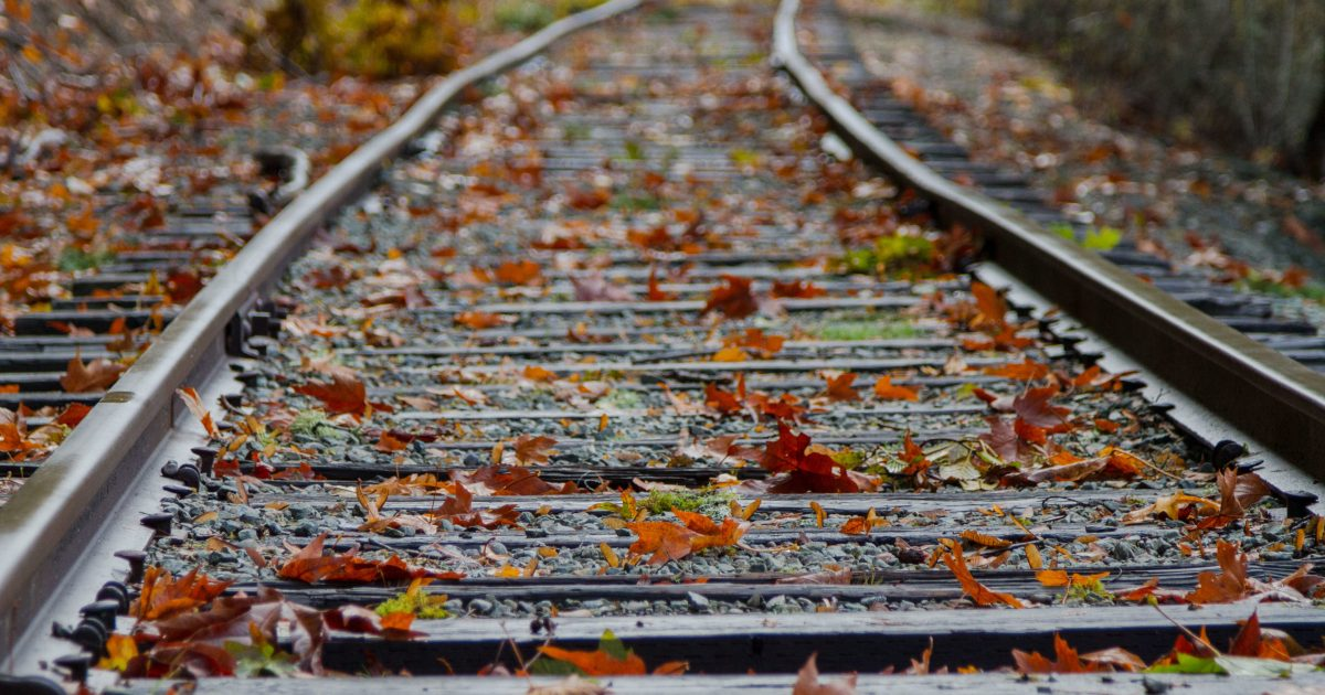 autumn leaves on traintracks