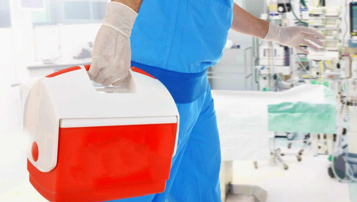 Arzt bringt Organspende in OP für Organtransplantation